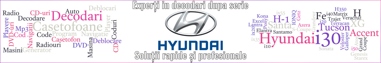 experti decodari casetofoane navigtii auto hyundai