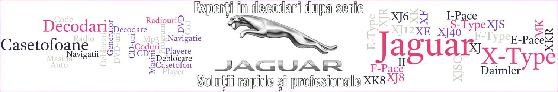 experti decodari casetofoane navigtii auto jaguar